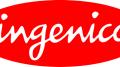 Gamifikált fizetés - Ingenico